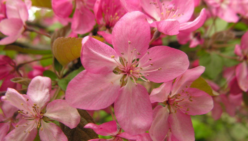 slide_0002_Layer 3